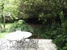 garden26may (5)