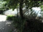 greenhouse (1)