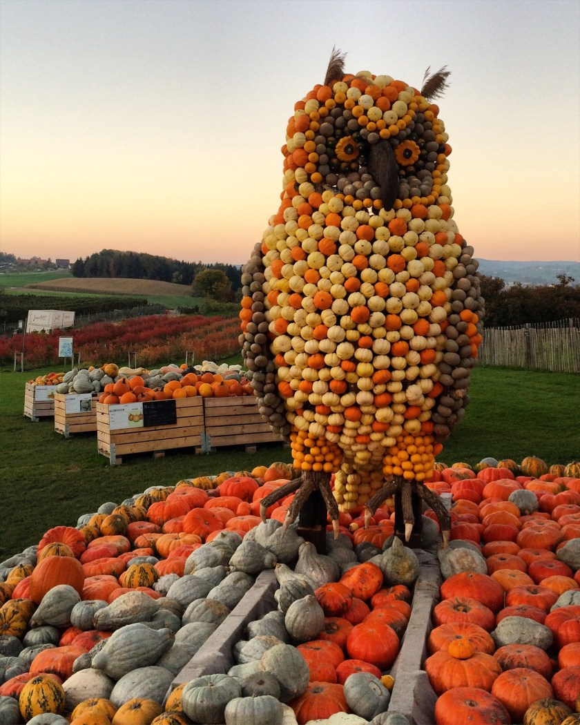 A pumpkin owl statue on Juckerfarm Switzerland