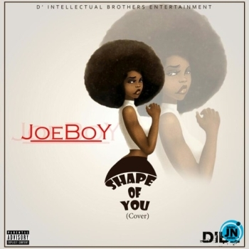 Joeboy - Shape Of You (Cover)