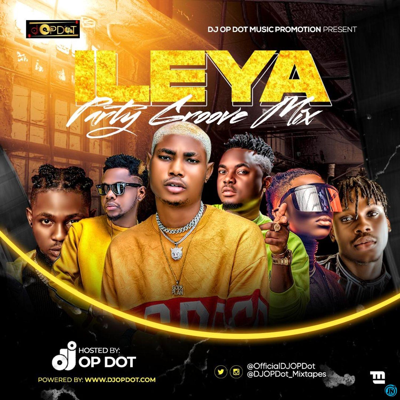 DJ OP Dot - Ileya Party Groove Mix