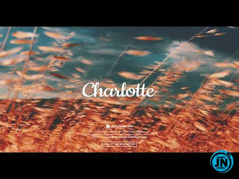 Ransom Beatz - Charlotte (Burna boy x Afrobeat Type Beat)