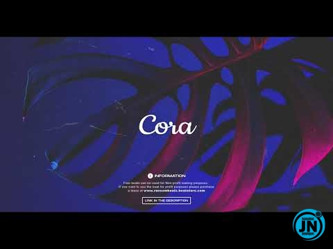 Ransom Beatz - Cora (Burna boy x Afrobeat Type Beat)