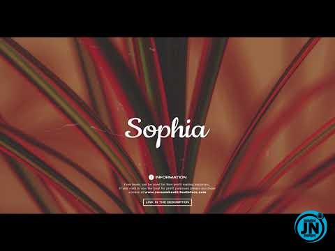 Ransom Beatz - Sophia (Burna boy x Runtown x Afrobeat Type Beat)