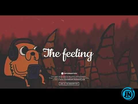 Ransom Beatz - The feeling (Jhus x Burna boy x Afrobeat Type Beat)