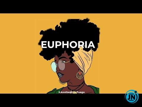 Skool Beatz - Euphoria (Fireboy ✘ Joeboy ✘Davido Type Beat)