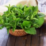 7 Herbs to Enhance Happiness