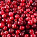 This Is How Cranberries Can be The Safest, Easiest and Most Successful UTI Prevention Method