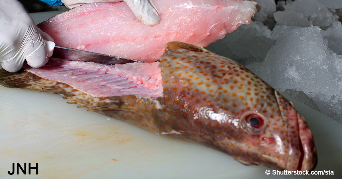 There's mercury in your fish! 6 ways to reduce exposure and prevent brain damage