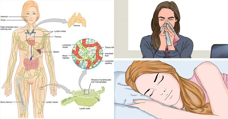 7 simple tips to naturally BOOST your immune system and REVERSE cold and flu symptoms