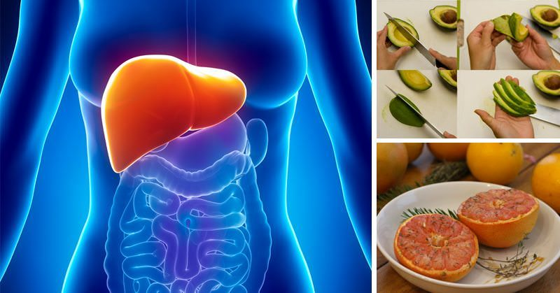 Your organs are FILLED with TOXIC bacteria (Here is how to detoxify them)
