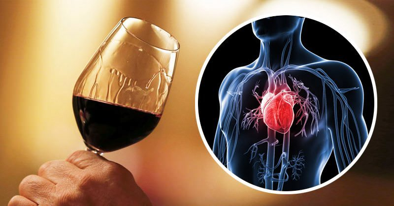 This Antioxidant In Red Wine Can REVERSE Risk of Cancer and Heart Disease
