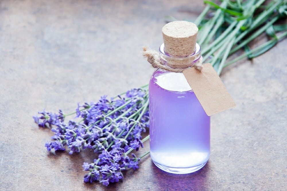 can lavender treat anxiety