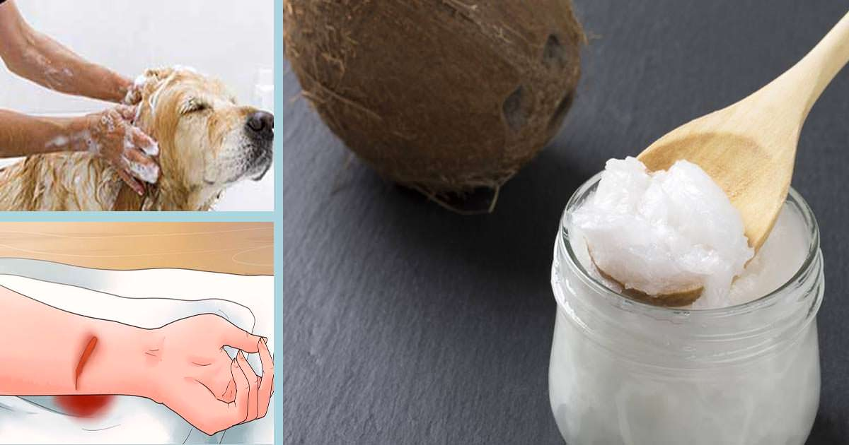 7 Ways To Use Coconut Oil That You've Never Heard Of