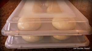 Dough covered and ready for the refrigerator