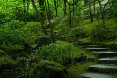Japanese Garden-27