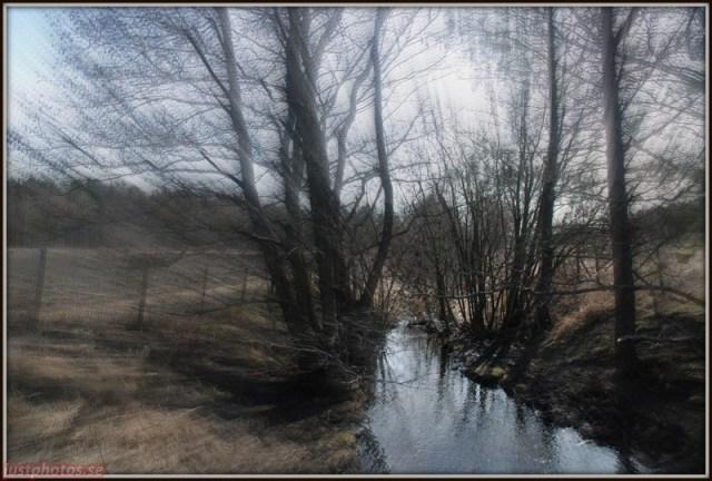 a stream in a field sweden