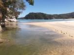 abel tasman great walk 3