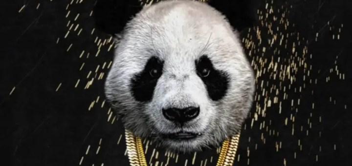 panda desiigner review