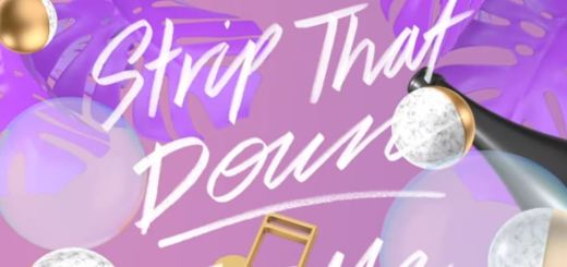 liam payne strip that down lyric video review