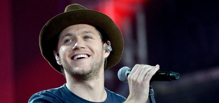 niall horan slow hands lyrics review and song meaning