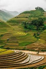 Le risaie di Sapa (Pinterest)