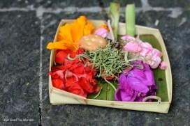 Offerte disseminate per Bali