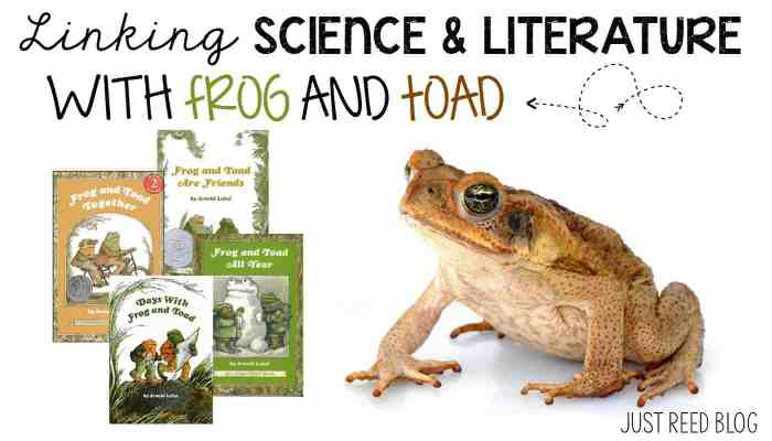 Fun ways to link Science and Literature with a Frog and Toad study