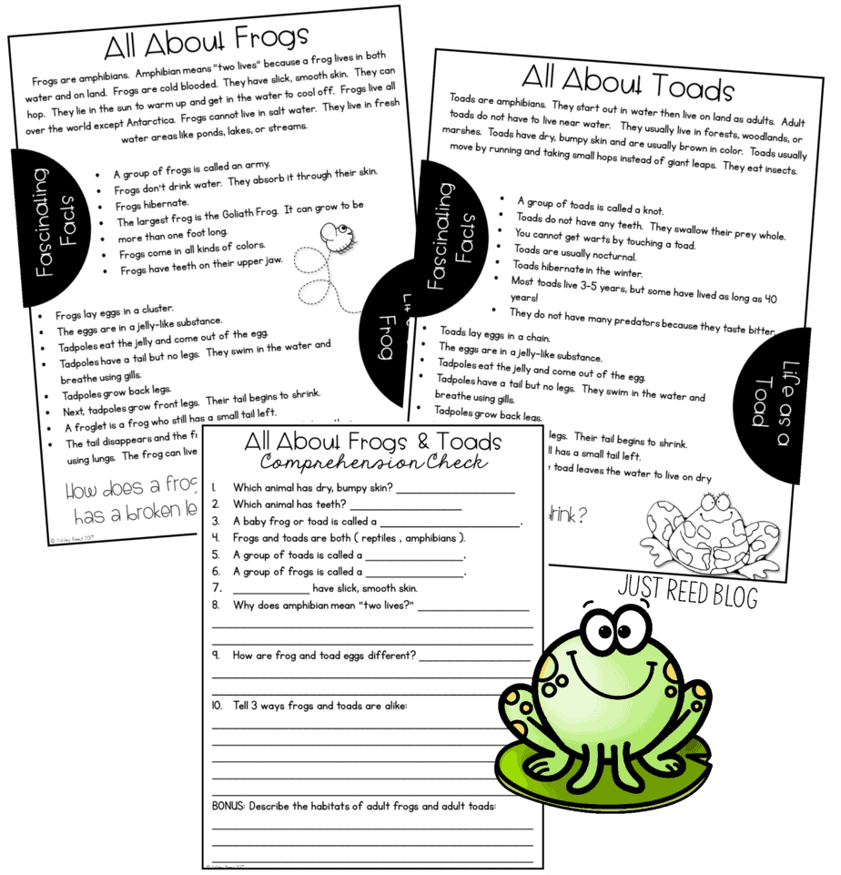 Linking Science and Literature with Frog and Toad Books