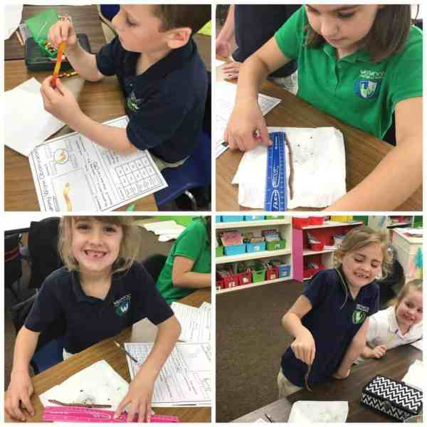 Give students a hands on experience with living and nonliving things as they explore gummy worms and earthworms