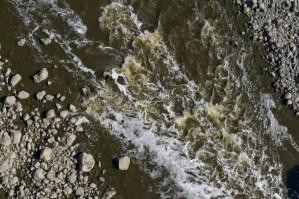 WaterStream0011_5_L
