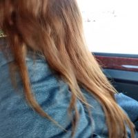 20 inches beautiful THICK auburn hair 3.5 in pony width