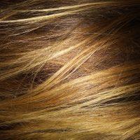 Light Brown Virgin Hair 10 inches