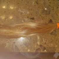 Light brown hair that has had one balayage treatment. Very healthy, shiny, and soft. Almost virgin