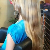 "Virgin 13-14"" Golden Blonde 2.5""thick from 10 year old Organic Vegetarian"