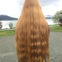 Thick Ginger Scandinavian virgin hair 25+ inches (from 15 year old)