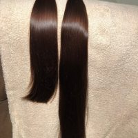 Two Beautiful Brown Ponytails