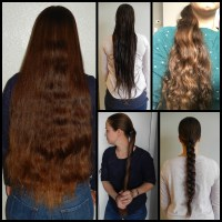 """24"""" x 4"""" Thick Healthy Virgin Chestnut Hair With Natural Highlights"""