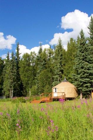 summer-yurt-4