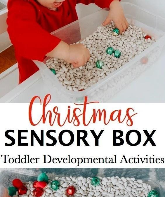 Christmas Sensory Bin for Toddlers