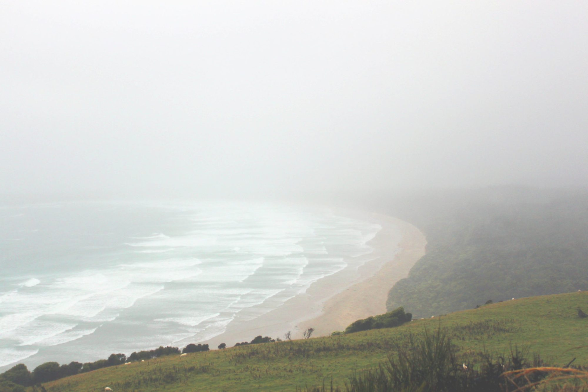 New Zealand's Purakaunui Bay is the filming location for Narnia's Cair Paravel   9 reasons why the Catlins needs to be on your New Zealand itinerary #newzealand #thecatlins #purakaunuibay #simplywander
