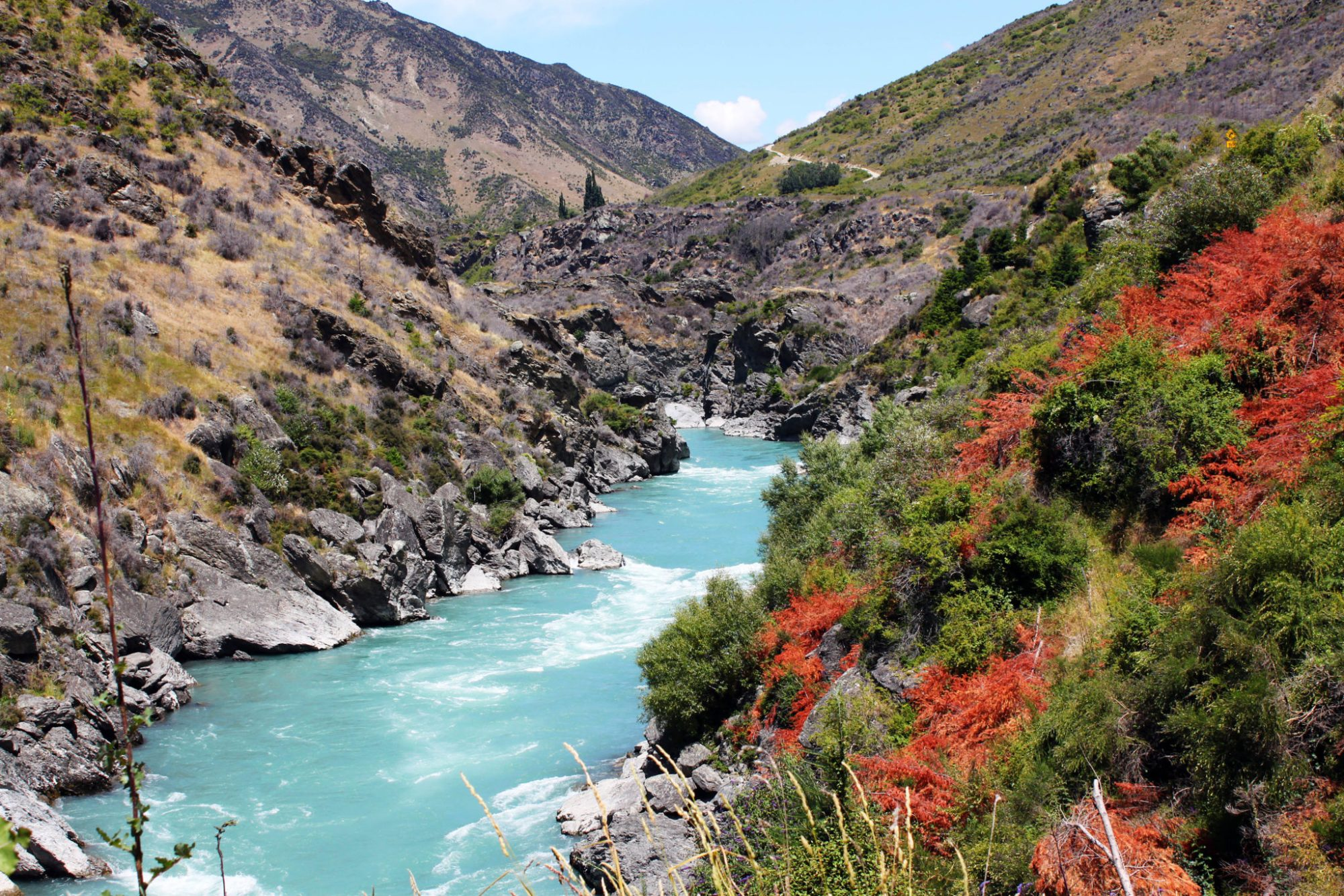 This New Zealand drive along the Kawarua river is stunning   8 Unforgettable things to do in Queenstown New Zealand #newzealand #queenstown #simplywander