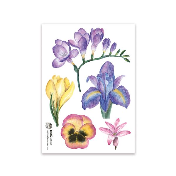 Стікерпак «Весняні квіти»