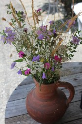 Wildflowers that I picked