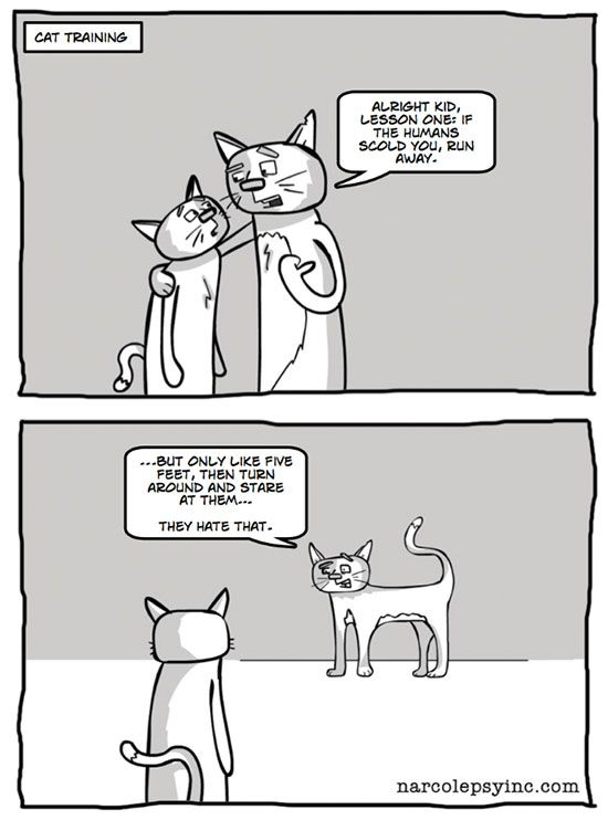 Cat Simon - You Turn Me On