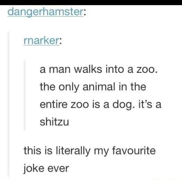 Image of: Facts Funny Joke About Dogs And Zoos Just Something creative Funny Jokes That Never Get Old 10 Is The Best Ever