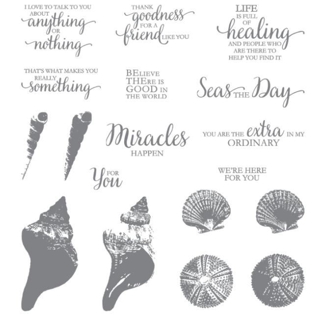 So Many Shells Stamp Set
