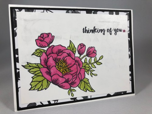 Stampin Up Birthday Blooms Thinking of You card idea colored with Stampin Blends - Jeanie Stark StampinUp