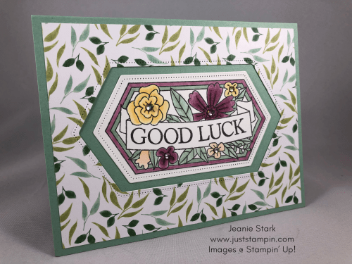 Stampin' Up! Believe You Can Good Luck card idea - Jeanie Stark StampinUp