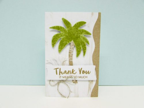 Stampin' Up! June 2019 Paper Pumpkin Thank You card idea - Jeanie Stark StampinUp